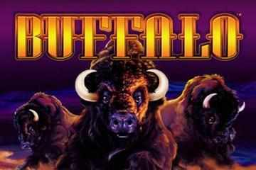 Free Buffalo Slot Machine Games