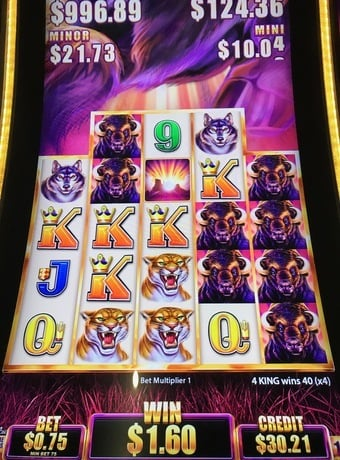 Slot Machine Buffalo