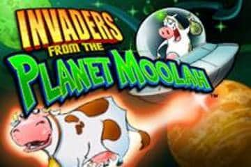 Planet Moolah Slots Mobile Desktop Free Slot Game