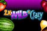 Wild and Crazy Slots