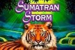 Sumatran Storm Slots