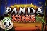 Panda King Slots