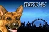 Rex Slots